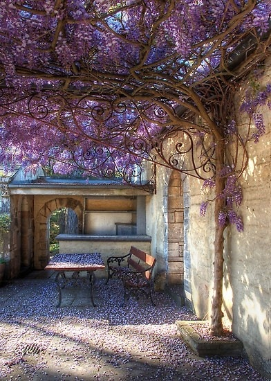 Toskania (Pinterest)