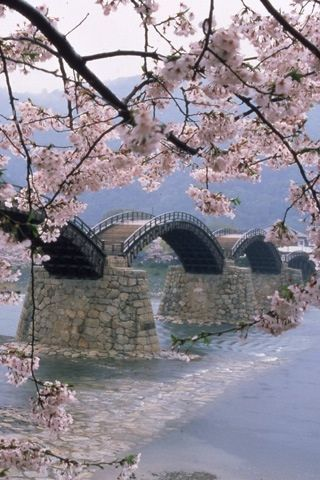 Japonia (źródło: pinterest)