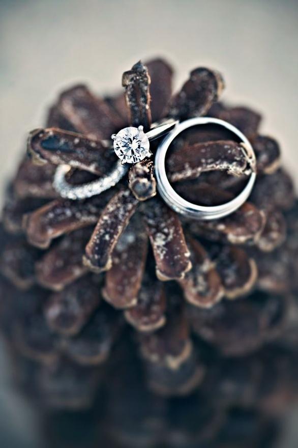 wesele udekorowane szyszkami